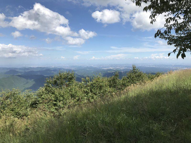 棒ノ折山の山頂1